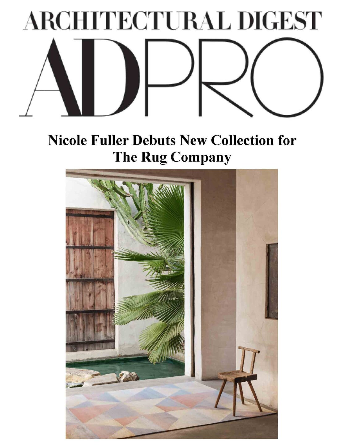 AD PRO THE RUG CO cover