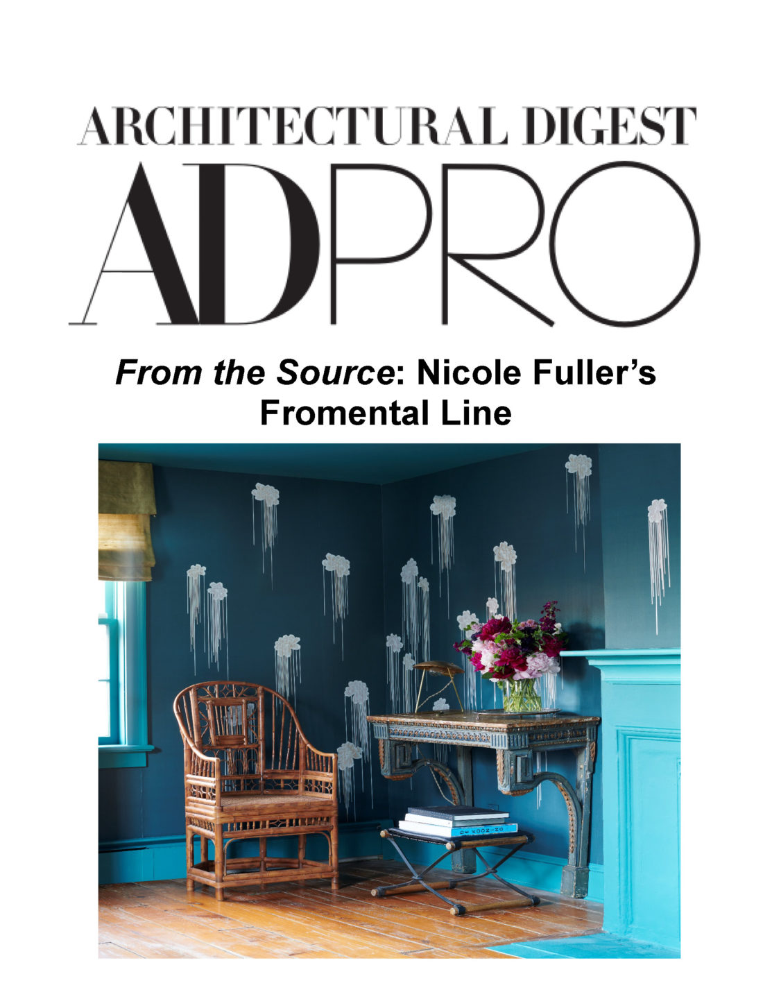 AD PRO from the source fromental png